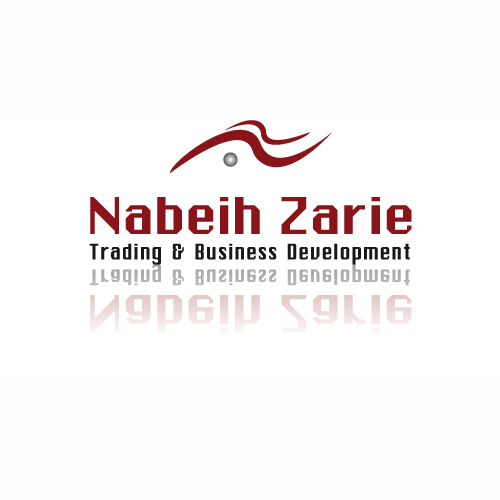 Nabeih Zarie Financial & Management Consulting